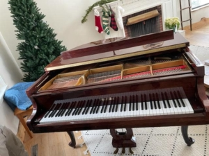 Residential Piano Move Little Falls MN to Park Rapids MN 1